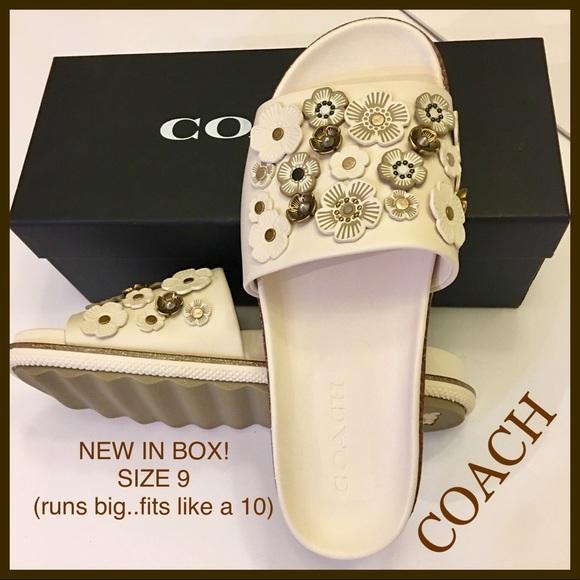 7567e65566d NIB Coach Tea Rose Sport Slides Sandals